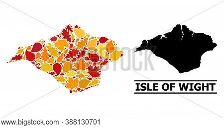 Mosaic Autumn Leaves And Usual Map Of Isle Of Wight. Vector Map Of Isle Of Wight Is Composed With Ra