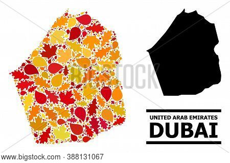 Mosaic Autumn Leaves And Usual Map Of Dubai Emirate. Vector Map Of Dubai Emirate Is Organized With R