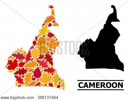 Mosaic Autumn Leaves And Usual Map Of Cameroon. Vector Map Of Cameroon Is Created From Random Autumn
