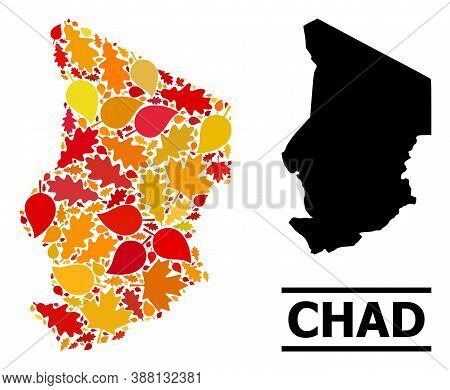 Mosaic Autumn Leaves And Solid Map Of Chad. Vector Map Of Chad Is Organized Of Scattered Autumn Mapl
