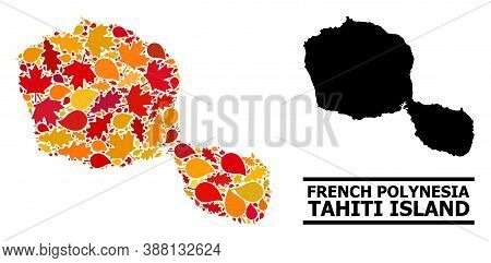 Mosaic Autumn Leaves And Solid Map Of Tahiti Island. Vector Map Of Tahiti Island Is Shaped From Rand