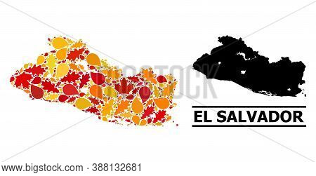 Mosaic Autumn Leaves And Solid Map Of El Salvador. Vector Map Of El Salvador Is Done Of Scattered Au