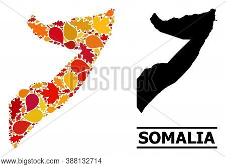Mosaic Autumn Leaves And Solid Map Of Somalia. Vector Map Of Somalia Is Constructed With Randomized