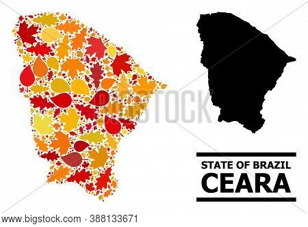Mosaic Autumn Leaves And Usual Map Of Ceara State. Vector Map Of Ceara State Is Composed With Scatte