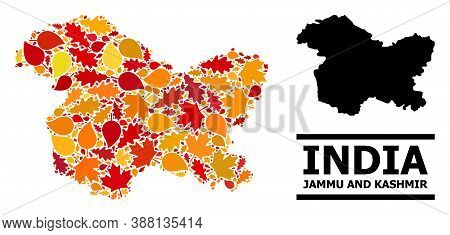 Mosaic Autumn Leaves And Usual Map Of Jammu And Kashmir State. Vector Map Of Jammu And Kashmir State