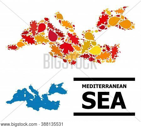 Mosaic Autumn Leaves And Solid Map Of Mediterranean Sea. Vector Map Of Mediterranean Sea Is Construc