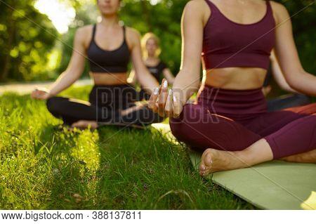 Peaceful women relax, group yoga training