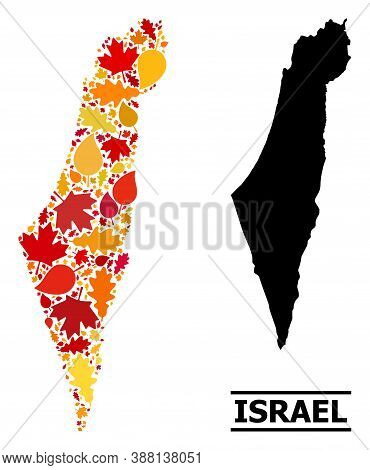 Mosaic Autumn Leaves And Solid Map Of Israel. Vector Map Of Israel Is Shaped Of Randomized Autumn Ma