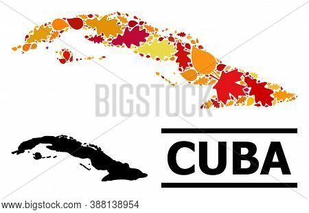 Mosaic Autumn Leaves And Solid Map Of Cuba. Vector Map Of Cuba Is Created Of Random Autumn Maple And
