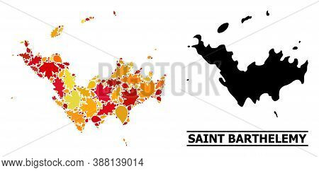 Mosaic Autumn Leaves And Solid Map Of Saint Barthelemy. Vector Map Of Saint Barthelemy Is Formed Fro