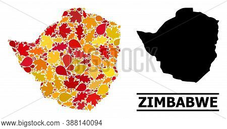 Mosaic Autumn Leaves And Solid Map Of Zimbabwe. Vector Map Of Zimbabwe Is Organized From Randomized