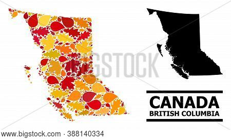 Mosaic Autumn Leaves And Solid Map Of British Columbia Province. Vector Map Of British Columbia Prov