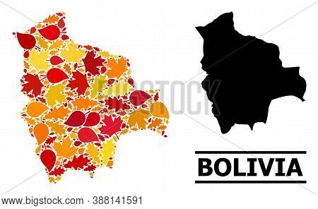 Mosaic Autumn Leaves And Solid Map Of Bolivia. Vector Map Of Bolivia Is Designed Of Scattered Autumn