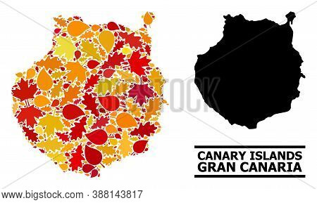 Mosaic Autumn Leaves And Solid Map Of Gran Canaria. Vector Map Of Gran Canaria Is Designed With Rand