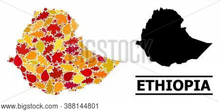 Mosaic Autumn Leaves And Usual Map Of Ethiopia. Vector Map Of Ethiopia Is Organized With Scattered A