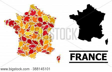 Mosaic Autumn Leaves And Usual Map Of France. Vector Map Of France Is Shaped Of Random Autumn Maple