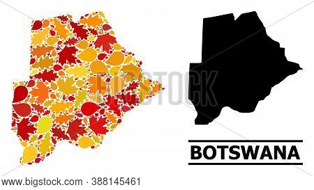 Mosaic Autumn Leaves And Usual Map Of Botswana. Vector Map Of Botswana Is Designed Of Randomized Aut