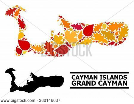 Mosaic Autumn Leaves And Solid Map Of Grand Cayman Island. Vector Map Of Grand Cayman Island Is Made
