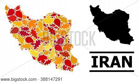 Mosaic Autumn Leaves And Usual Map Of Iran. Vector Map Of Iran Is Composed From Random Autumn Maple