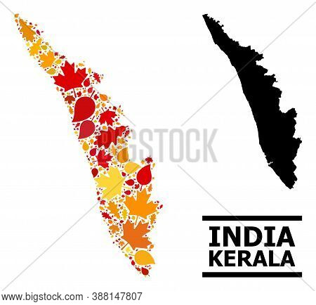 Mosaic Autumn Leaves And Usual Map Of Kerala State. Vector Map Of Kerala State Is Shaped With Random