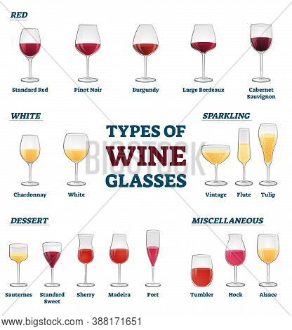 Types Of Wine Glasses Banner With Educational Labeled Classification And Example Collection Vector I