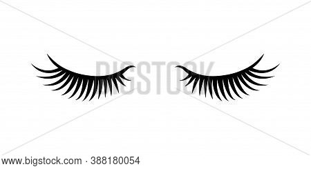 Eyelashes Isolated On White Background. Eyelash Extension Vector Illustration.