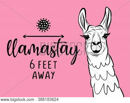 Llamastay (llama Stay / Namaste) 6 Feet Away - Lettering Typography Poster With Text For Self Quarin