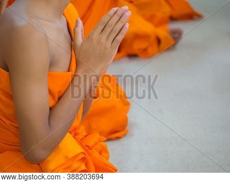 Close-up Of Novices Monk Are Praying. Space For Text