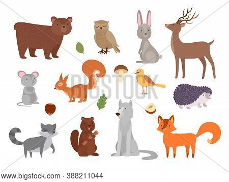 Wood Animals. Cute Wild Characters In Forest Fox Owl Bear Wolf Vector Animals In Flat Style. Owl And