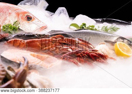 Side view of variety of fresh luxury seafood, Lobster Snapper Crayfish sea bass prawn octopus, on ice background with icy smoke in seafood market with black background.