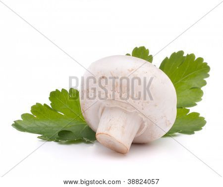 Champignon mushroom and parsley leaves isolated on white background