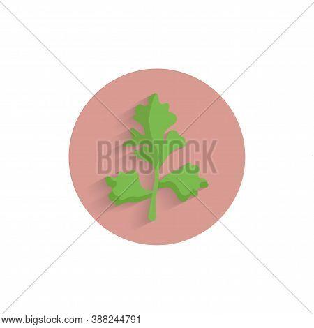 Parsley, Italian Flat Leaf Colorful Flat Icon With Long Shadow. Parsley Flat Icon