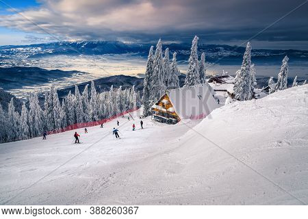 Amazing Winter Recreation Places And Ski Slopes With Snow Covered Trees. Active Skiers On The Slopes