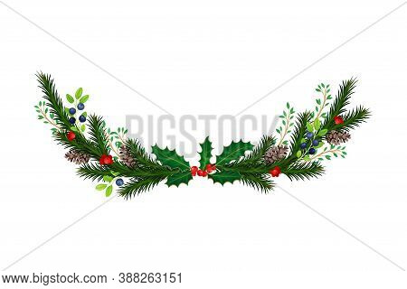 Evergreen Branches Of Coniferous Tree And Holly Arranged In Semicircular Vector Composition