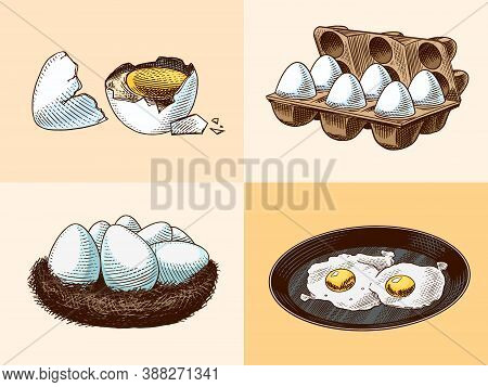 Frying Pan With Fried Eggs And Scrambled Omelette, Shell And Yolk. Farm Product. Engraved Hand Drawn