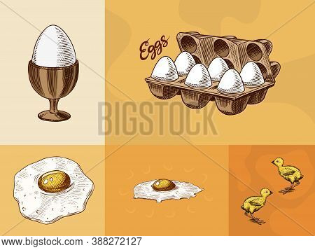 Eggs And And Yolk, Scrambled Omelette, Shell And Farm Product, Chicken And Packaging. Engraved Hand