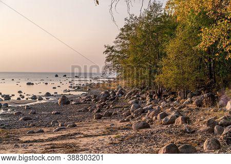 Lomonosov District. Scenic View Of Cape Grey Horse And The Bay Next To The Cape.
