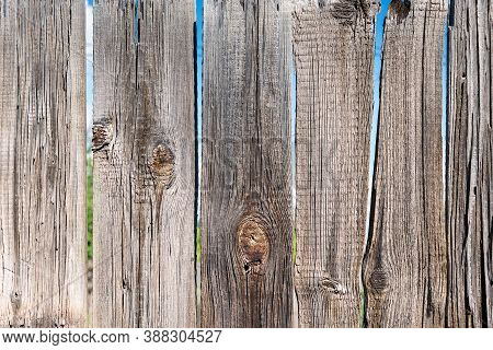The Surface Of An Old Wooden Fence. Faded From The Sun, Dry Crooked Uncoated Gray Planks. Through Th