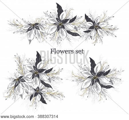 Vector Set Of Poinsettia Flowers Isolated On A White Background. Hand-drawn Doodles In Realistic Sty