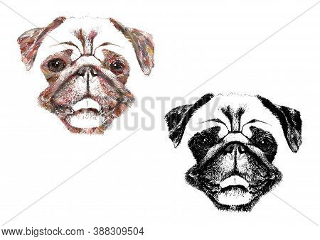 Artistic Silhouette Illustration Of Cute Smiling Pug Dog, Isolated On White Background