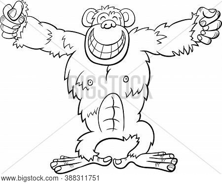 Black And White Cartoon Illustration Of Funny Gorilla Ape Wild Animal Character Coloring Book Page