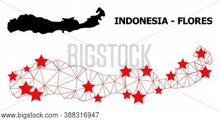 Mesh Polygonal And Solid Map Of Indonesia - Flores Island. Vector Structure Is Created From Map Of I