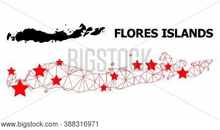 Carcass Polygonal And Solid Map Of Indonesia - Flores Islands. Vector Structure Is Created From Map