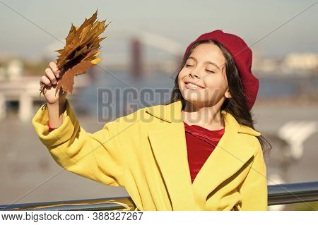 Smiling Kid Collecting Memories. Farewell To Autumn. Last Autumn Beams. Fall Is In The Air. Ideas Fo