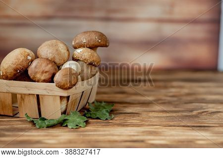 Mushroom Boletus Over Wooden Background. Autumn Cep Mushrooms. Ceps Boletus Edulis Over Wooden Backg