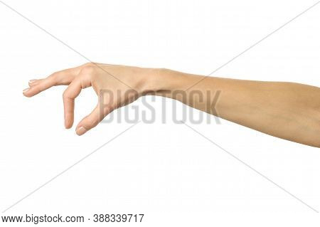 Hand Picking, Holding, Grabbing Or Reaching. Woman Hand Gesturing Isolated On White
