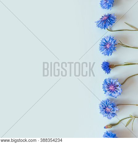 Flower Border Of Blue Flowers On A Pastel Blue Background. Top View, Copy Space. Empty Space For A T