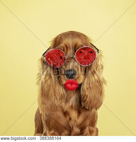 Make Up. Modern Design. Contemporary Art Collage With Cute Dog And Trendy Colored Background With Ge