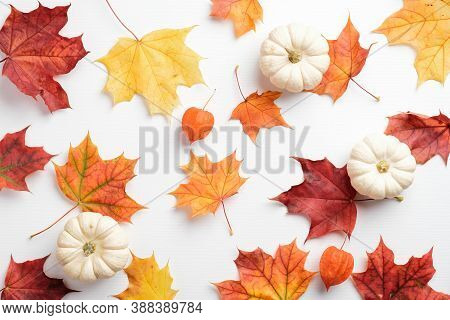 Autumn Composition. Colorful Maple Leaves And Pumpkins On White Table. Seasonal Background. Autumn F