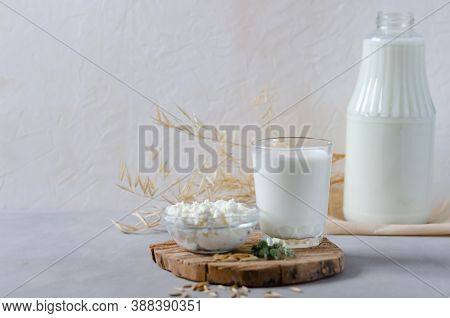 Homemade Milk And Cottage Cheese On A Wooden Slice On A Gray Background. Fermented, Protein Foods An